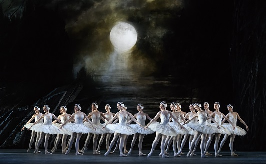 ROH Live: Swan Lake (2021/2022 Ballet) cover image